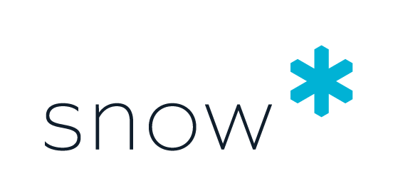 Logo Snow Software